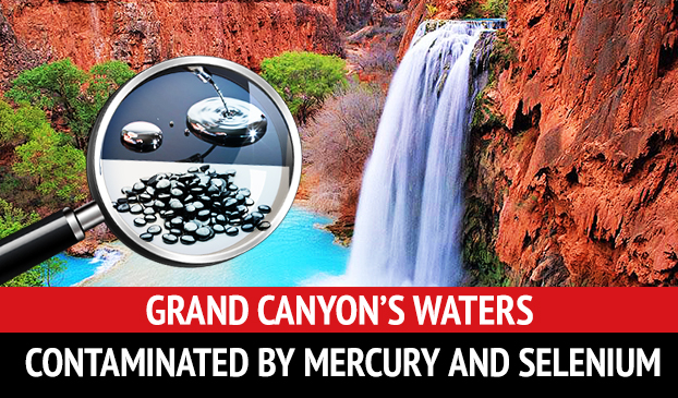 The Grand Canyon Is Being Contaminated By Mercury And Selenium