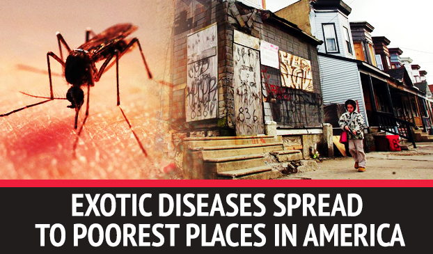 Exotic Bacterial And Parasitic Diseases Have Spread To The Poorest Places In The United States