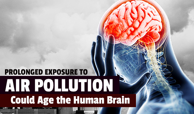 Exposure To Air Pollution Could Age The Human Brain